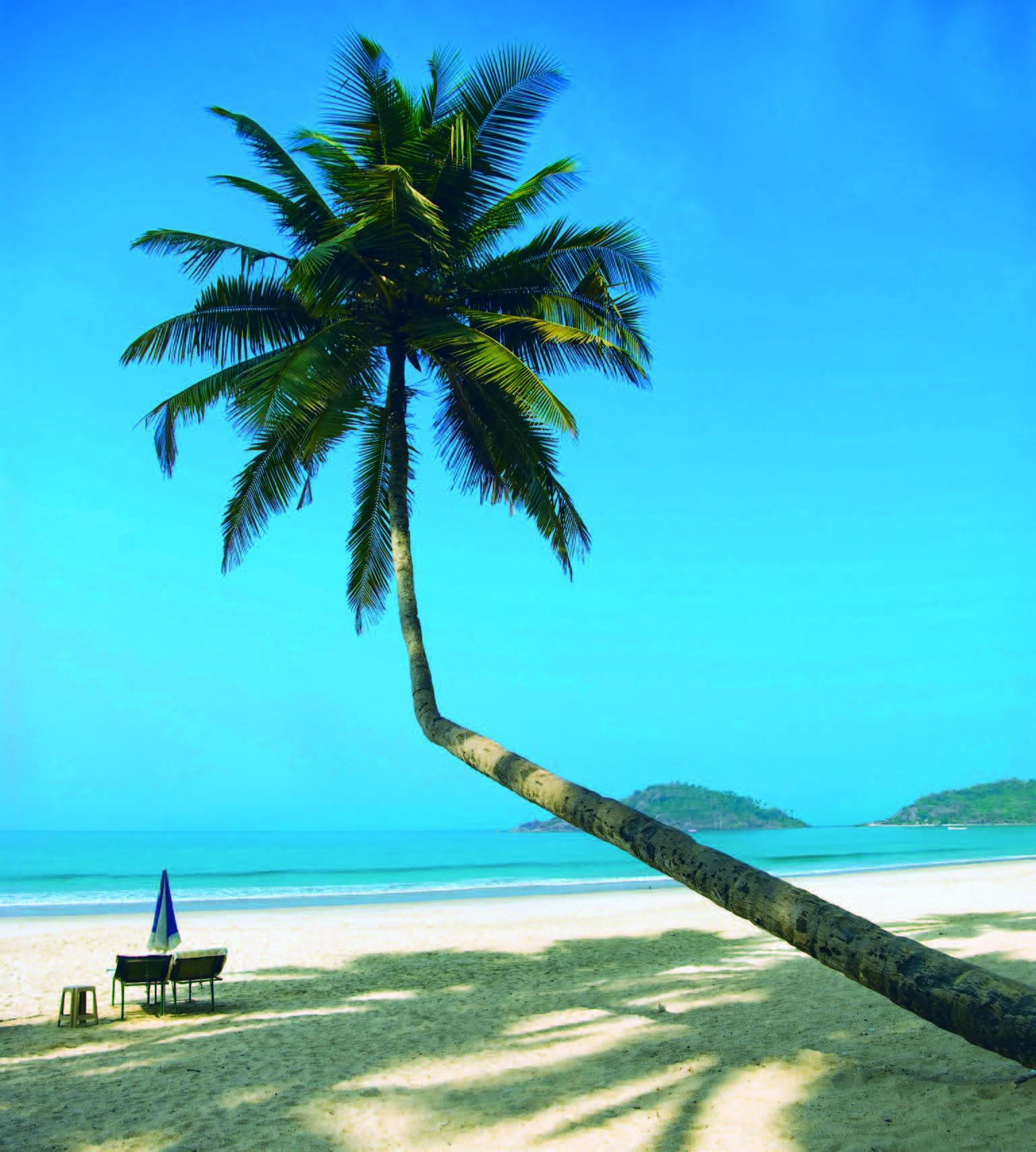 Kelionės po Goa nuo įspūdingų paplūdimių iki gurmaniškos virtuvės 4