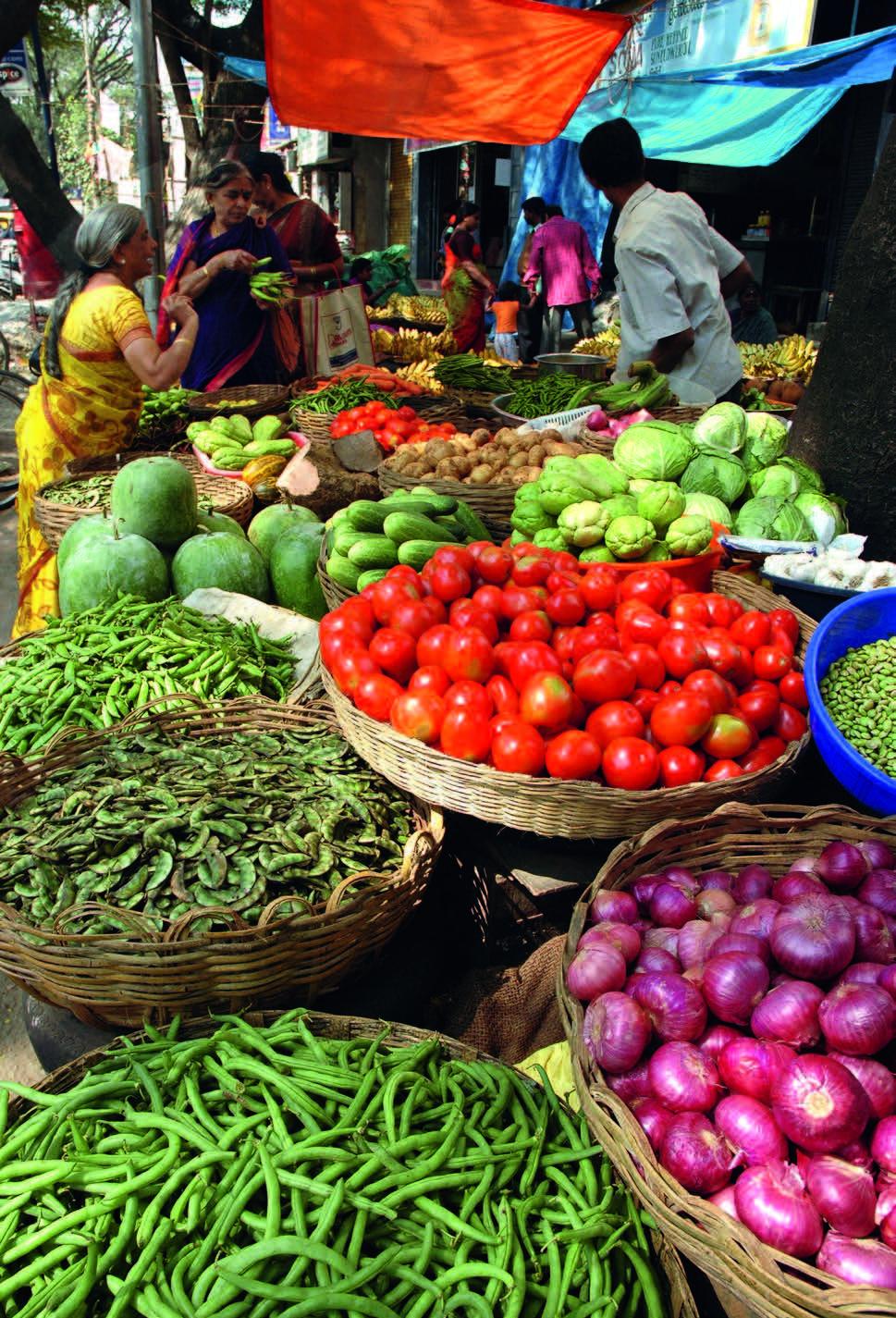 Kelionės po Goa nuo įspūdingų paplūdimių iki gurmaniškos virtuvės 7