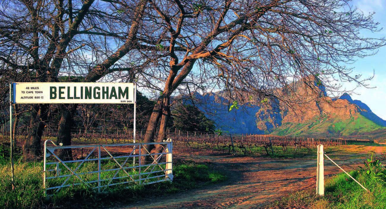 """Pakeliui į """"Bellingham"""" vyno ūkį 2"""