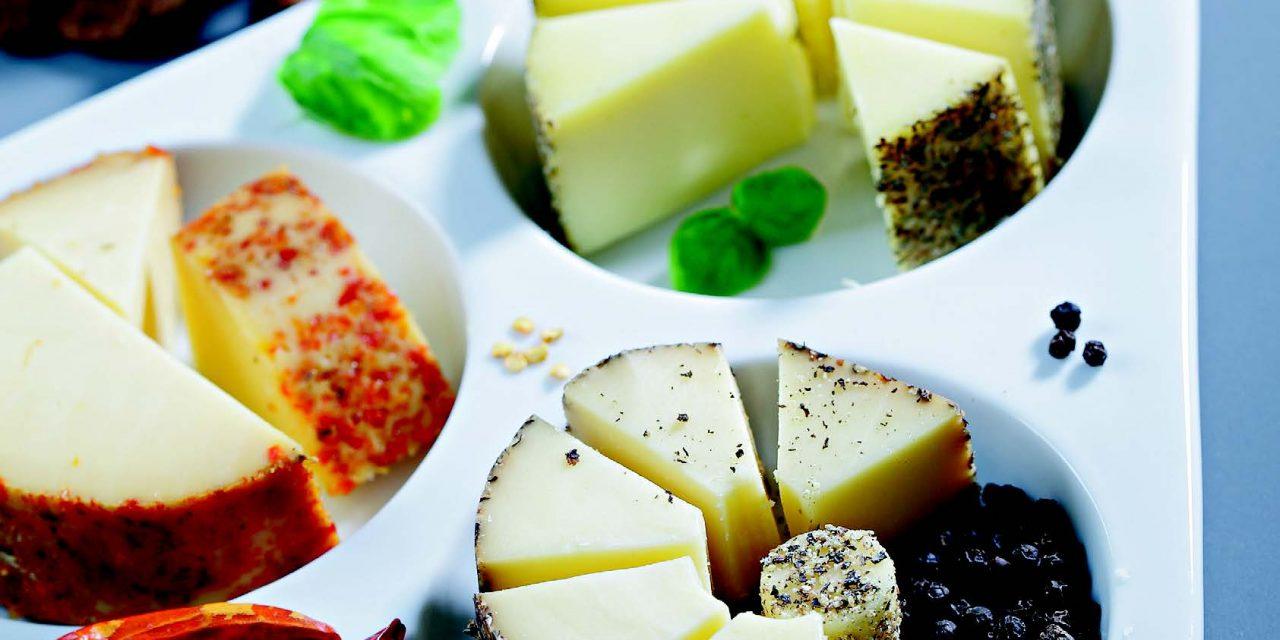 Stilingi sūrio patiekalai