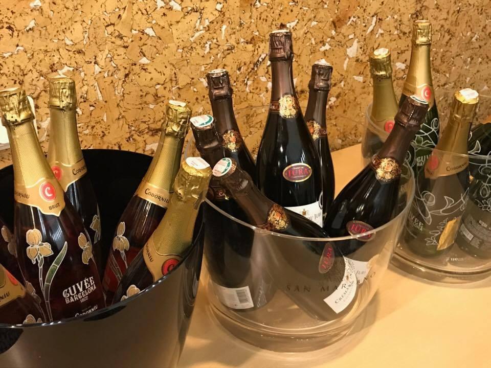 HORECA atstovus subūrė pažintinė putojančių vynų bei šampano degustacija (3)