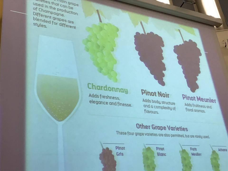 HORECA atstovus subūrė pažintinė putojančių vynų bei šampano degustacija (4)