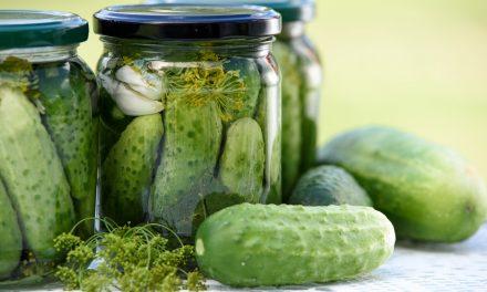 Probiotikų ir fermentuoto maisto nauda