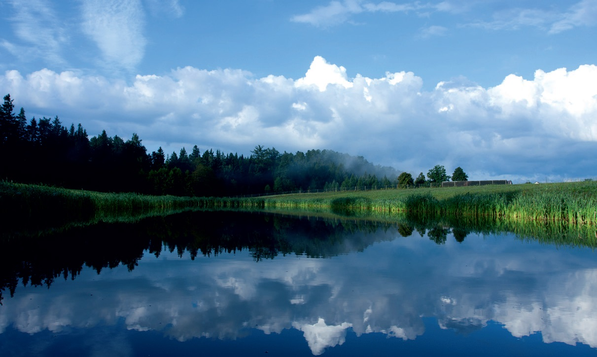 Kuriant parką, išsaugota natūrali gamta