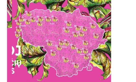 Lietuvoje skelbiamas šaltibarščių potvynis